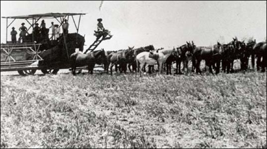 Ballena 1911. The Warnocks, Peppers & McIntosh Threshing Crew.